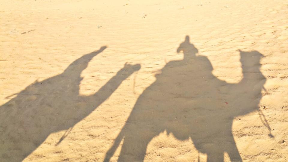 PicsArt_02-03-02.13.37.jpg
